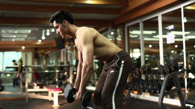 rutinas musculacion